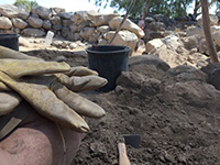 http://www.saintgeorgescollegejerusalem.com/Bible and Archaeology – Bethsaida Archaeology Project