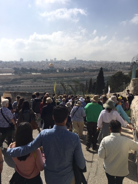 A Holy Land Pilgrimage Day 14